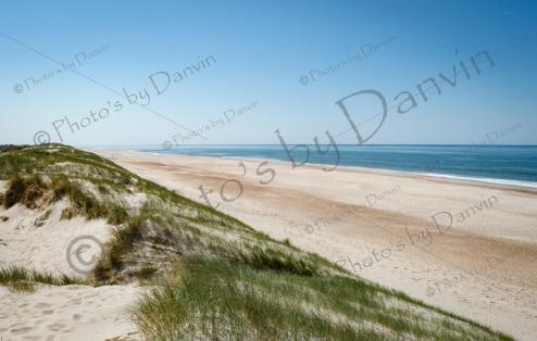 dune-101 (1 von 1)